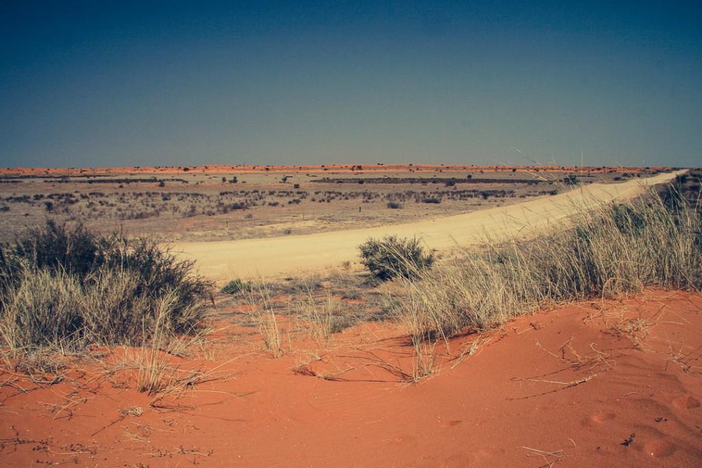 Namibië - Afrika - Kalahari woestijn - reisjournaal 2007 - Jannekes wereld - reizen