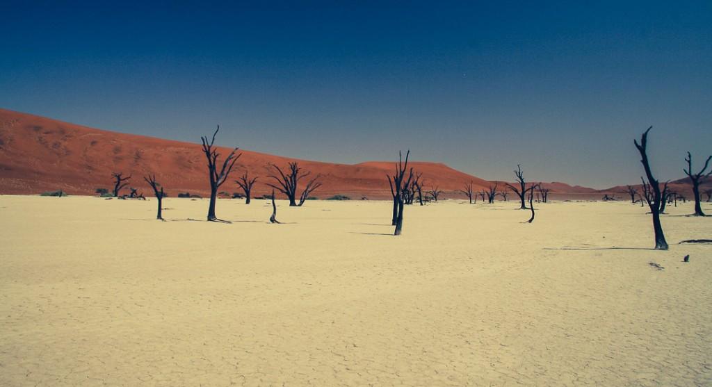 Namibië - Afrika - Deadvlei - reisjournaal 2007 - Jannekes wereld - reizen