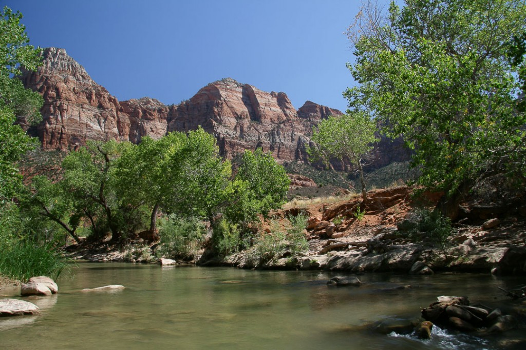 Amerika Zion National Park natuur